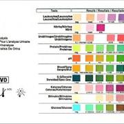Gesundheitstest für 10 Indikatoren – 100 Urin Teststreifen mit Referenzfarbkarte
